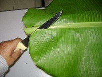 Remove spine from the banana leaf
