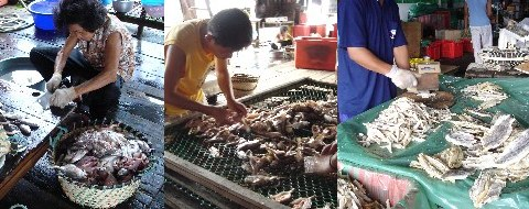 Steps involved in making salted fish